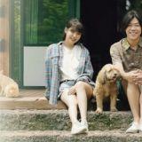 IU因拍攝電視劇不會加入《孝利家民宿》第二季!網友希望新職員由「他」來擔任!
