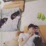 安宰贤曝日常照片    开心被小动物包围