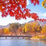 【旅遊資訊】2019韓國楓葉轉紅時程表! 提前規劃好時間才不會跟紅楓失之交臂哦!