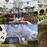 首爾還有哪裡好玩?來首爾植物園漫步在韓式傳統庭院吧~