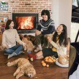 《孝利家民宿2》本月20日播出最後一期! 包含朴寶劍、潤娥採訪
