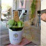 【庆州.咖啡厅】韩国地标瞻星台用吃的!庆州特色抹茶咖啡厅~
