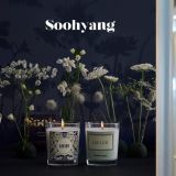 韓國香氛品牌為《愛的迫降》打造專屬「LEE LEE」系列!還被譽為是最浪漫的告白物!