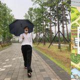 防弹V在公园拍照上传后...釜山市立公园将他走过的小路加入地标,连拍照处都特别标示了!