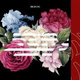 無盡花路上的 YG 師兄弟BIGBANG、iKON 持續聯手橫掃音源榜!