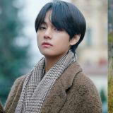 金泰亨获得粉丝投票「想在秋天一起散步的男爱豆」第一名!前四名都由BTS包办