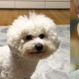 「听说这只狗很像我?」亲自和狗狗作比较的圭贤!网友:左边也是你吧XD