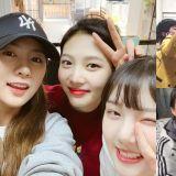 「96line」Red Velvet Joy、Apink吴夏荣、GFRIEND艺琳结伴照料遗弃犬!