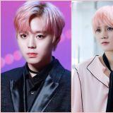 行走的櫻花美景!誰是最適合染粉紅髮的偶像呢?
