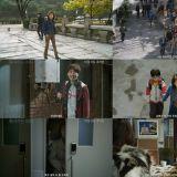 尹汝貞《酒神小姐》預告片公開 關於性與死亡