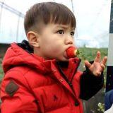 《Oh!My Baby》裡的可愛混血寶寶泰吳已經變成小帥哥啦?