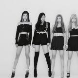 C9 將推七人新女團 cignature 預定 2 月正式出道!