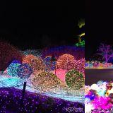 【加平必玩】来灯火熠熠的晨静树木园享受过节氛围吧♥