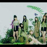 IZ*ONE 新日单发行 下周重返《Music Station》!
