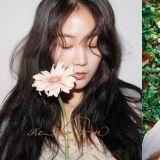 聽著甜蜜新歌賞櫻去!昭宥驚喜新歌〈My Blossom〉明日發行