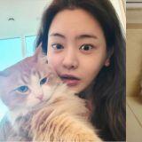 這位女藝人被全韓國「貓奴」羨慕!只因貓咪長得太美了