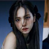 BLACKPINK Jisoo確定主演JTBC新劇《雪花蓮》 由《SKY Castle》原班人馬打造