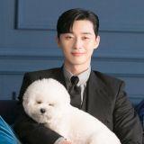 「辛巴来探爸爸班!」朴叙俊爱犬来拍摄现场探班~互动起来超有爱啊♥