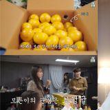 當IU正真摯的進行《IU TV》拍攝時,旁邊工作人員們的焦點卻全在「寶劍橘子」上!