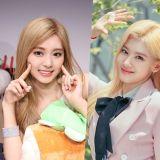 她們是兵哥哥最愛的女愛豆! 韓國軍隊女團人氣決選TOP 10
