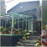 【弘大花草系咖啡厅】超好拍花房咖啡厅,棉花糖拿铁的甜蜜下午茶时间!