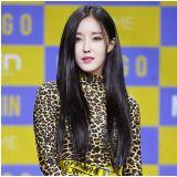 T-ara成员孝敏   因急性肠炎临时取消越南行程