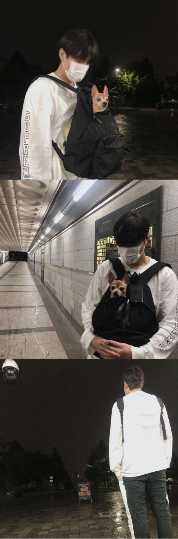 男神总扑空!李敏镐IG更新「想带狗狗散步遇大雷雨」「兴奋逛超市却遇到店休日」