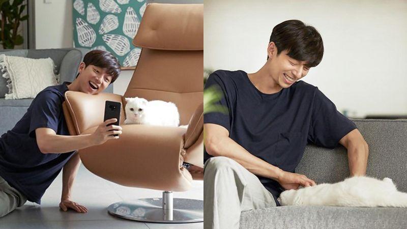 孔刘广告拍摄狂撸猫咪+自拍,网友:好想变成那只猫啊❤