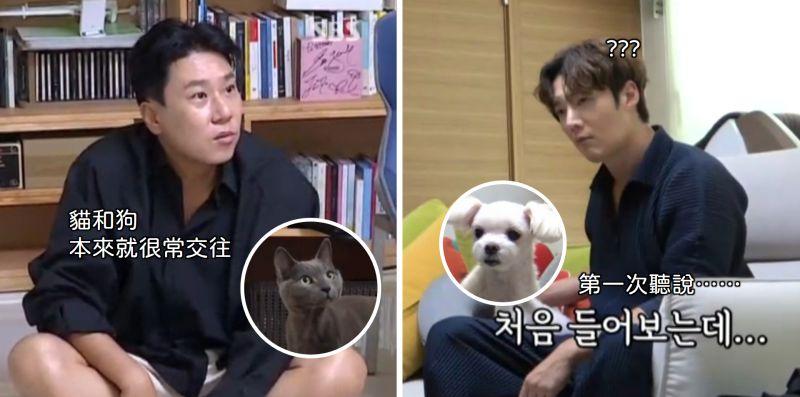 《我家的熊孩子》李常敏想到崔振赫家「蹭住」,極力撮合自己的貓和崔振赫的狗