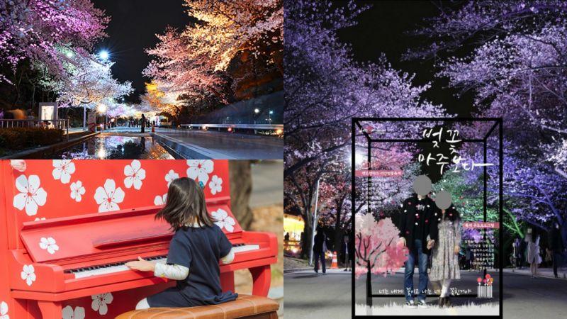 這個櫻花慶典不只有櫻花,還有情侶跑、馬巡遊、花市、拍照區等體驗活動!