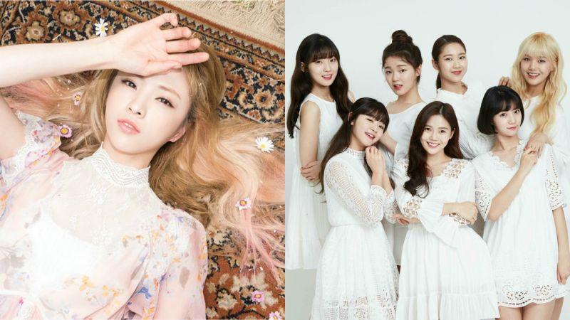JinE 難敵健康問題確定退團 Oh My Girl 今日起成為 7 人組合!