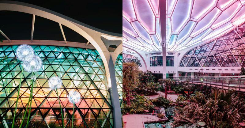 【旅遊資訊】首爾植物園夜間開放! 夢幻燈光&音樂伴隨芬多精漫步~