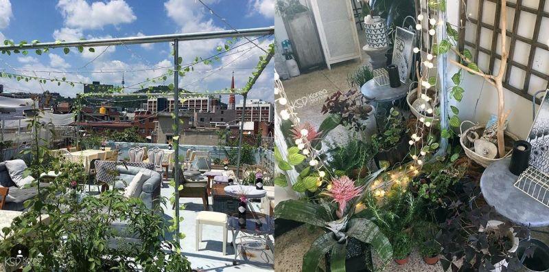 【梨泰院咖啡廳】置身大自然般的悠閒~