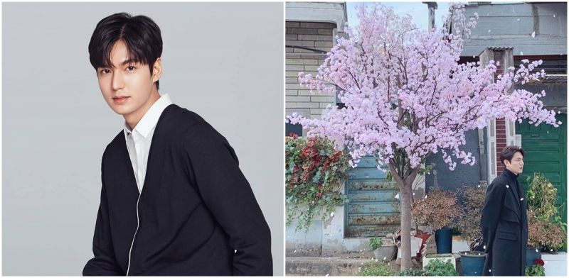 眾星之首!演員李敏鎬為新冠肺炎捐獻3億韓元