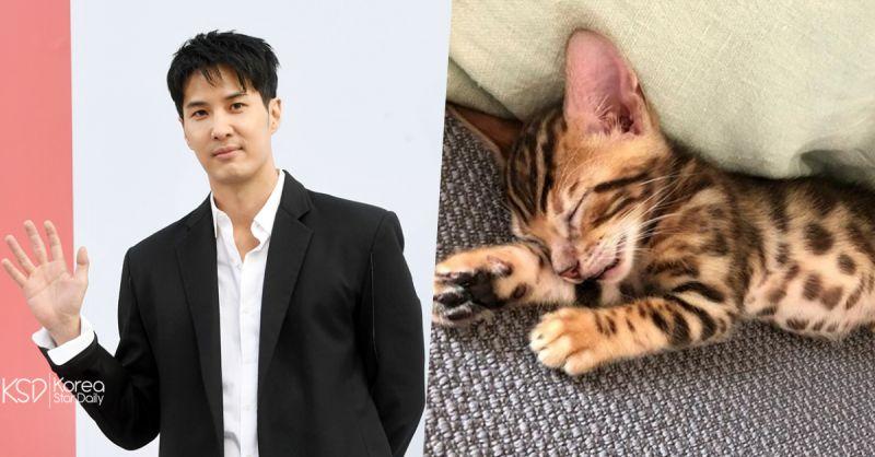 金知硕带小猫咪回家 竟招来网友骂声一片:「为什么不领养? 」