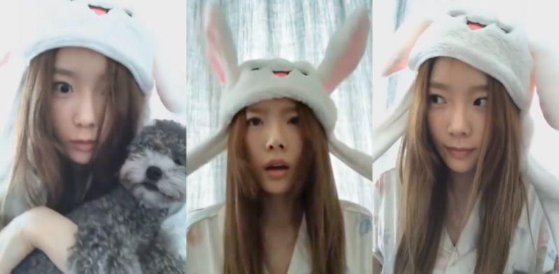超萌!太妍戴兔兔帽子唱歌 愛犬ZERO狂吠嚇得她「兔兒豎起」!