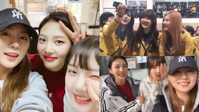 「96line」Red Velvet Joy、Apink吳夏榮、GFRIEND藝琳結伴照料遺棄犬!