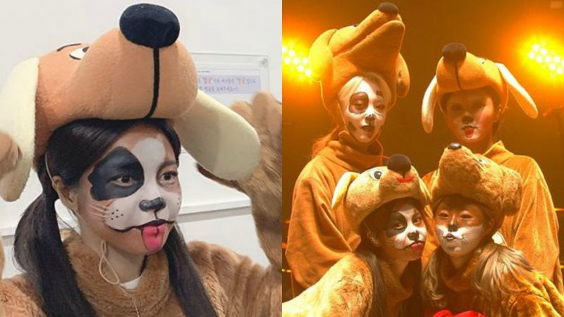 MAMAMOO扮成「小狗」表演新歌,台上可愛爆萌,台下一臉生無可戀~XD