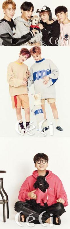 李東輝&SEVENTEEN&NCT等眾星抱狗狗拍寫真 呼籲領養流浪犬