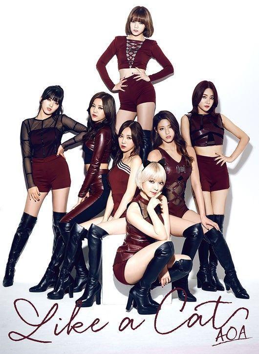 AOA在日成绩不俗 单曲登Oricon第四