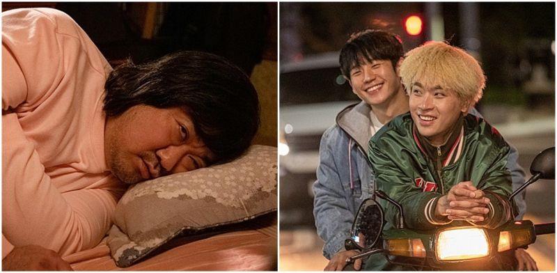[韓評]電影《青春催落去》在韓上映成票房黑馬的原因是?