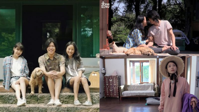 《親愛的客棧》與《孝利家民宿》超相似!JTBC方面:沒有對中國方面出售版權!