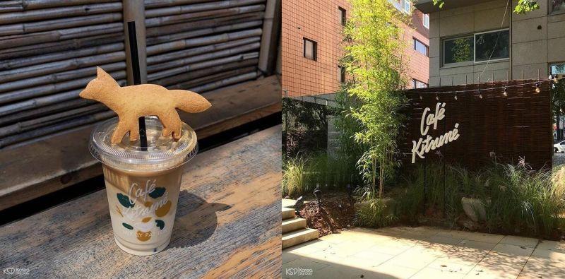 從日本紅到韓國的Café kitsune,你跟上了網美們的腳步了嗎?