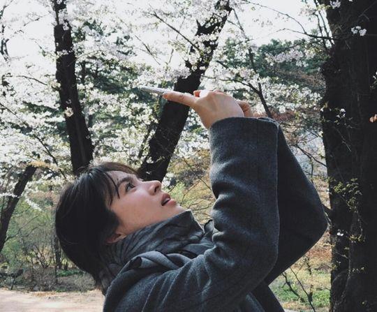 女神宋慧乔人比花娇 春季赏樱侧拍也像剧照一样美