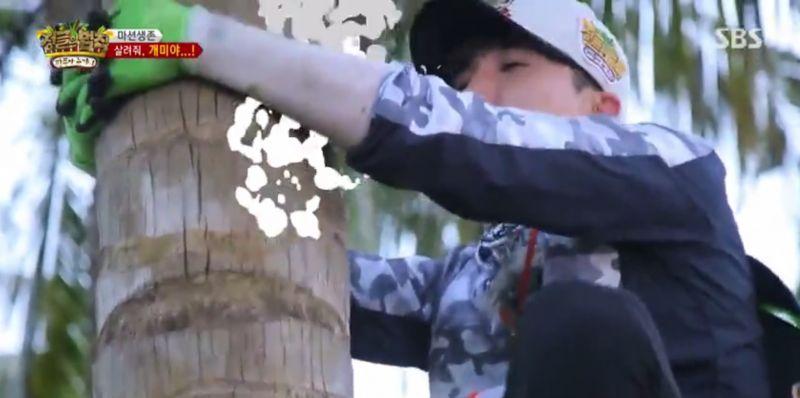 SJ利特挑战摘椰子,爬上满是蚂蚁的椰子树