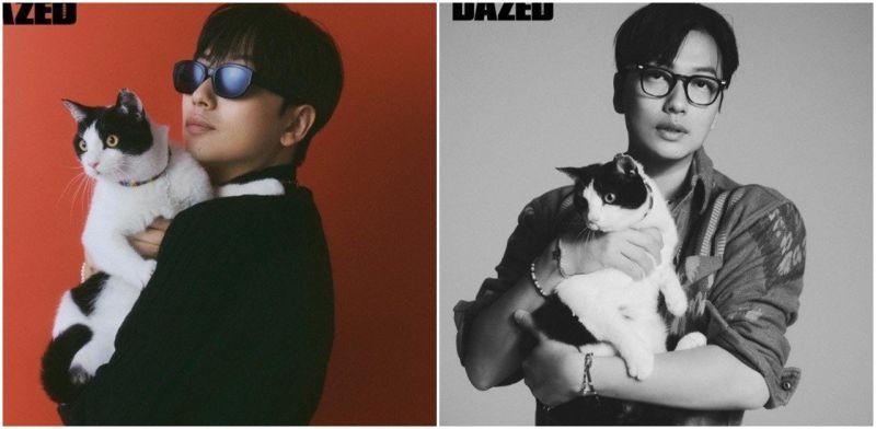 演员李东辉对毛发严重过敏却收编流浪猫!邀爱猫一同入镜时尚杂志