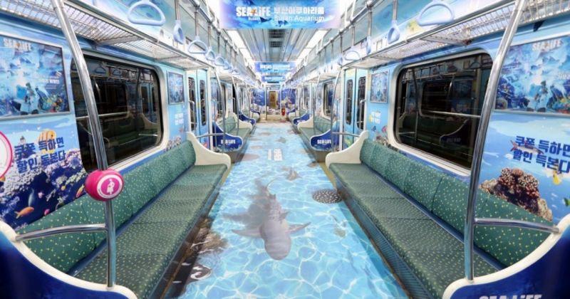 【旅游资讯】釜山地铁开通「海洋主题列车」! 进入车厢如同置身海洋深处
