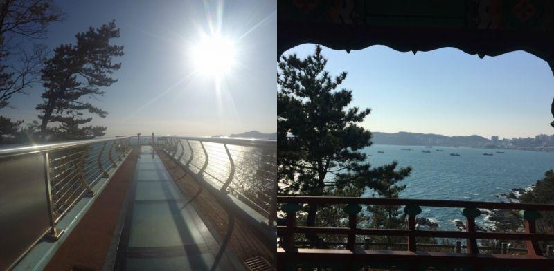 釜山必拍的天空步道之一:影岛!