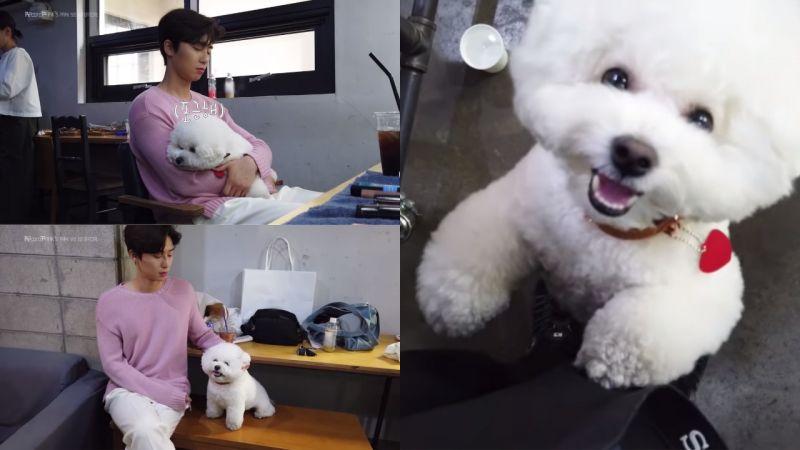 朴叙俊带著爱犬「辛巴」到拍摄现场!爸爸走到哪儿子就跟到哪,真的超级可爱呀♥