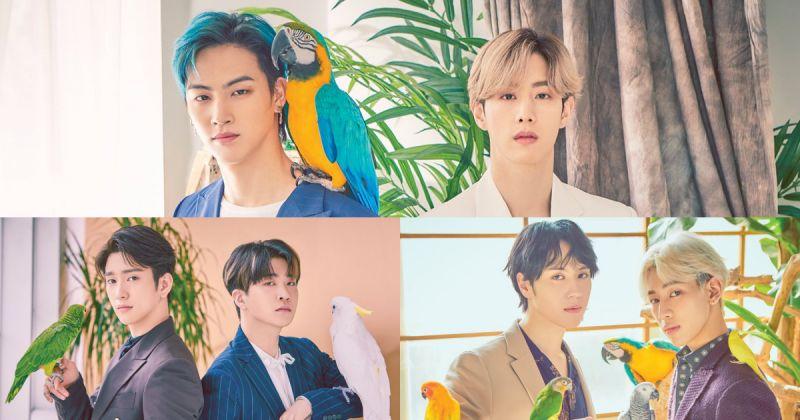 GOT7 韩、日活动都满档 明年初发行日语迷你三辑!